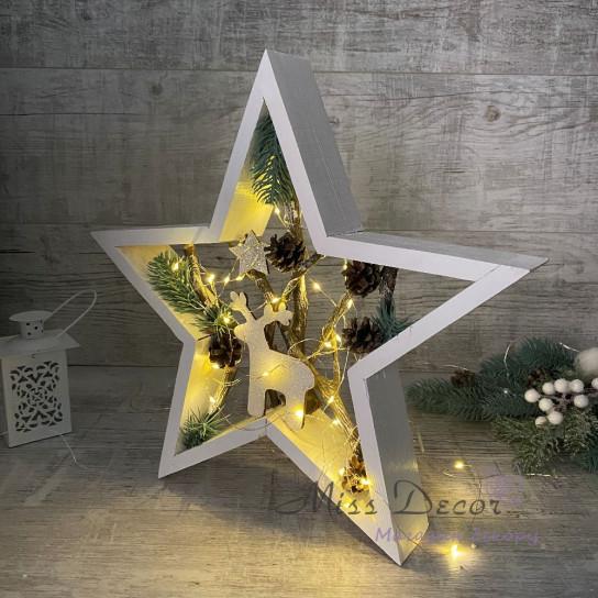 Звезда + LED подсветка