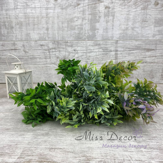 Букет зелени плоский листик