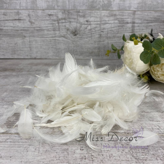 Перья в пачках белые