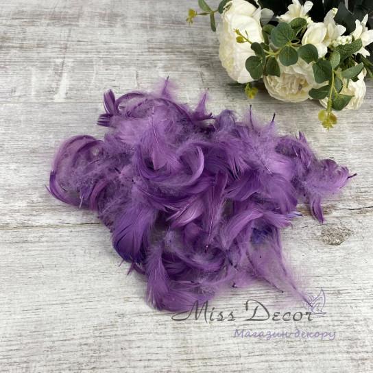 Перья в пачках фиолетовые